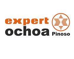 Expert Ochoa Logo