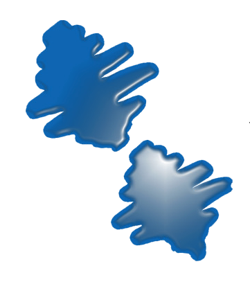 Salvador Vidal Logo