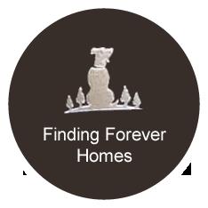 Finding Forever Homes Logo